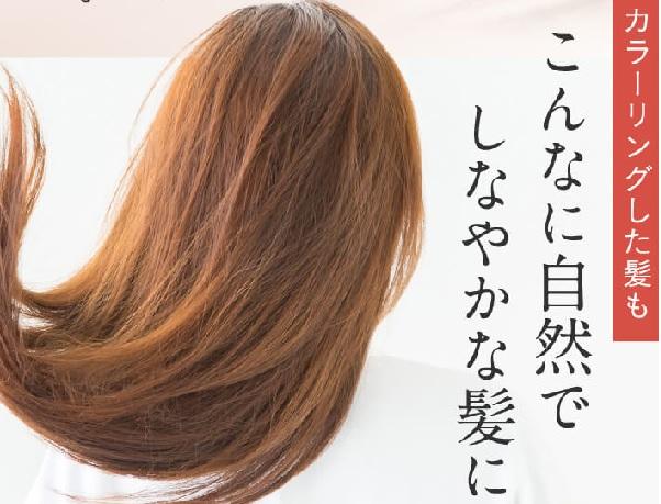 ビーエストシャンプー白髪