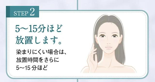 hairju(ヘアージュ)ヘアカラーフォーム使い方2